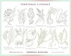 Vegetable Literacy Poster & Book Cover on Behance