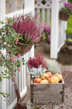 Affordable And Effective Cottage Garden Designing Methods For Your Home Your home is your world, and much like the world around us, looks are important. Cottage Garden Plan, Cottage Garden Design, Cottage Gardens, Garden Spaces, Balcony Garden, Autumn Inspiration, Garden Inspiration, Entree Halloween, Fall Containers