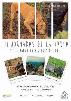 III JORNADA TRUFA - ALBERGUE LUGARES COMUNES - VALLE DE TUS