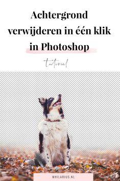 Er zijn in Photoshop heel veel verschillende manieren waarop je een achtergrond kunt verwijderen of objecten uit foto's kunt knippen. Deze manier is de makkelijkste én snelste die er is! Met deze feature verwijder jij met één klik je achtergrond uit je foto. Kijk mee!