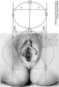 spiritd3sire: Vesica Piscis vulva (by El Circulo Interior)