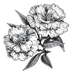 Image result for carnation flower tattoo