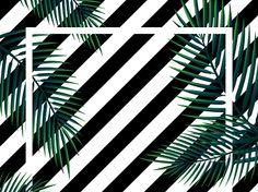 Imagens para Quadros Decorativos - Google Drive Living Room Decor Cozy, Google Drive, Plant Leaves, Plants, Inspiration, Home Decor, Nova, Mary Kay, Lettering