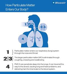 This is how Particulate Matter enters your body. #AirPollution