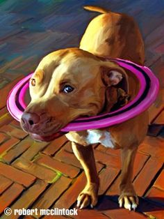 """""""Fleet"""" - a pit bull painting by Robert McClintock. Bull Pictures, Pitbull Facts, Bull Painting, Pit Bull Love, Pit Bull Art, Cute Cats And Dogs, Bulldog Puppies, Dog Portraits, Looks Cool"""