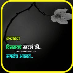 Karma Quotes, Status Quotes, Life Quotes, Motivational Picture Quotes, Morning Inspirational Quotes, Marathi Quotes On Life, Marathi Poems, Good Thoughts Quotes, Good Night Quotes