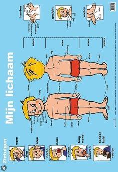 Poster over het lichaam