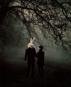scary love couple cute adorable Black and White sad creepy white black dark alice in wonderland rabbit white and black darkness marry Woods eerie fog foggy MARRIED Images Terrifiantes, Rabbit Tale, Rabbit Head, Bunny Rabbit, Dark Romance, Chesire Cat, Creepy Pictures, Were All Mad Here, Arte Horror