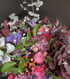 Oct 30, Flowers, Plants, Instagram, Plant, Royal Icing Flowers, Flower, Florals, Floral