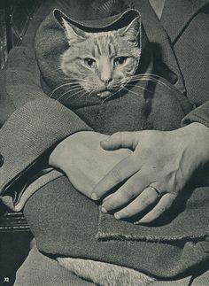(1958)