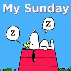 'My Sundays',  Zzzzz, Snoopy and Woodstock.