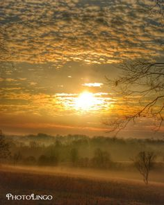 Fine Art Photography, Sunrise, Fog, Trees, Clouds, Landscape Photography Print, Nature Photograph, Wall Decor, Wall Art, Virginia Landscape www.etsy.com/shop/PhotoLingo