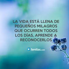 La vida está llena de milagros