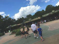 Animal Kingdom in Disney World | Adventures in a New(ish) City #vacation #travel #florida #disney #food #foodblogger #newishcityHOU