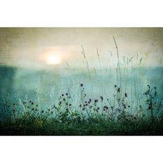 Omax Decor Autumn sunrise Gallery Wrapped Print on Canvas