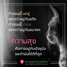 ความสุข Job Thai, Best Quotes, Love Quotes, Learning Quotes, Personal Development, Quotes To Live By, Mindfulness, Positivity, Words