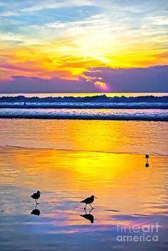 ✯ Sunset - La Jolla, California