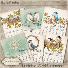 *** INSTANT DOWNLOAD ***   A GREAT WALL CALENDAR FOR HOME OR OFFICE. BEAUTIFUL WATERCOLOR IMAGES OF WHIMSICAL BIRDS, FLOWERS AND PLANTS. THEY PRINT OUT GREAT ON BOTH CARD STOCK AND PHOTO PAPER. EACH MONTH IS 8.5 X 11 INCHES IN SIZE AND IS A SINGLE IMAGE IN JPEG FORMAT. ALL IMAGES MADE