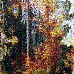 Détail d'une œuvre de Matthew Brandt sur le stand de M+B Gallery. Impression chromogénique enterrée à Hawaii