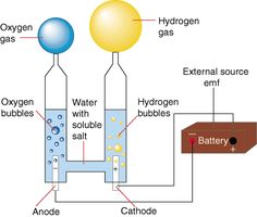 Separate Hydrogen and Oxygen from Water Through Electrolysis