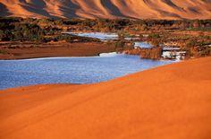 Une oasis en plein désert… plus exactement à Laayoune