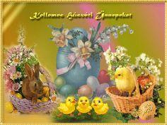 Traiborg - Member Home Page Wicker Baskets, Easter, Spring, Gardening, Community, Social Media, Decor, Google, Happy Easter