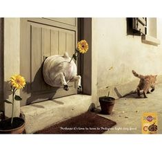 Creative and Funny Ads That Will Make You ads commercial commercial ads ads Funny Cats And Dogs, Funny Bunnies, Funny Animals, Stupid Animals, Funny Advertising, Creative Advertising, Ads Creative, Creative Posters, Photomontage
