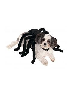 Rubies Costume Company Pet Spider Harness Costume, Medium * More info could be found at the image url.