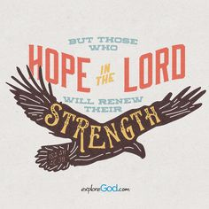 But those who hope in the LORD will renew their strength.  They will soar on wings like eagles; they will run and not grow weary, they will walk and not be faint. -Isaiah 40:31