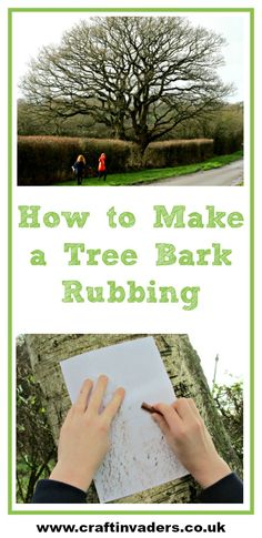 Tree bark varies wildly between species. Taking a tree bark rubbing is a great way to focus on different patterns and textures and learn about trees.