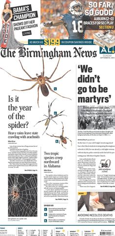 If you've got arachnophobia, don't look at this Birmingham News front page
