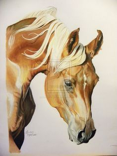 chesnut horse with a flaxen mane by LindseyTaylor on DeviantArt
