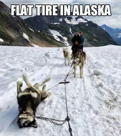 I have a flat
