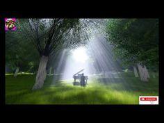 Relaxing Piano Music, Sleep Music, Meditation Music,Calming Music - 4K