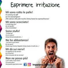 Queste sono alcune frasi per esprimere irritazione in italiano.  Alcune sono volgari o di registro linguistico basso, altre sono di registro linguistico più elevato.  Che cosa ne pensate?  Ne conoscete altre di pertinenti?