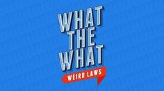 "What the What? (Weird Laws)  What the What is a screen-based game that makes you scratch your head and think ""this can't be a real law!"" But it is! It says so on the internet. It might actually be illegal to play this game in Florida, check with local authorities before purchase."