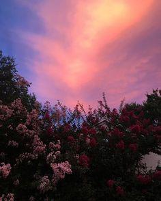 SKY / SUNSET #sunset #skies #sky #love #mood #pink #purple # lovely #pornsky #baddie #sun #cloudy #cloud #love #pin #pinners #pinner #boys #girls #iphone #samsun #blog #fashion #friend #car #cars #road #tree