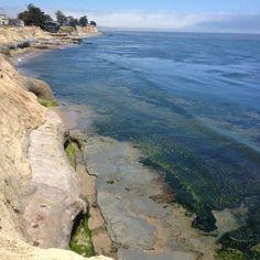 Santa Cruz coastline. Santa Cruz, CA