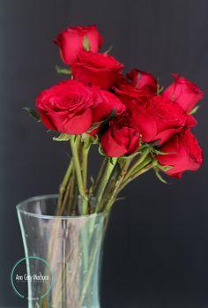 Nombre común: Rosas