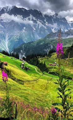17 Outstanding Beautiful Landscaping Mountains To Inspiring Your Landscaping ) ) Beautiful Landscaping Mountains Mix … Beautiful Places To Visit, Wonderful Places, Beautiful World, Trees Beautiful, Landscape Photos, Landscape Photography, Nature Photography, Animal Photography, Nature Pictures