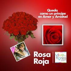 Rosas tipo exportación de la mejor calidad a un precio razonable, sólo aquí en www.vivelasflores.com. No dejes pasar el día del amor y la amistad y celebra a esa persona que tanto quieres! Te esperamos.