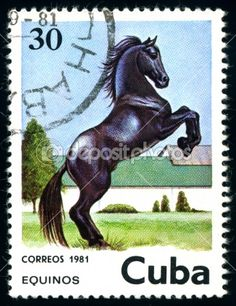 Cuban horse stamp, by Sergii Rodymenko