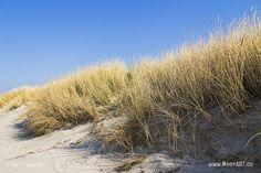 Was bedeutet eigentlich der Küsten- und Dünenschutz für uns?