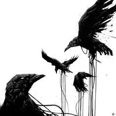Sit Haiiro, black and white art, crow art, bird art