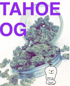 Tahoe OG is the perfect rainy day strain!! Strong, and fast-acting and great for those suffering from insomnia, pain, and lack of appetite!! Pick some up at 10% off your donation for Save Up Sunday!! #saveupsunday #pickup #flower #gnc #allday #everyday #save #weed #greens #herbs #discounted #donations #fire #bud #thc #medicated #rollup #thrichomes #sticky #indica #heavy #couchlock #relax #420 #215 #patients #hightimes #thedailythc #weedstagram #budpics