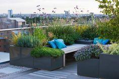 Large Roof Garden   Charlotte Rowe Garden Design
