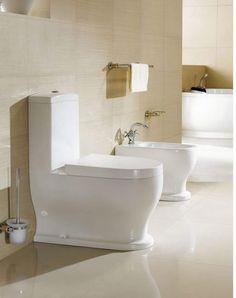 Bathroom Using One Piece Toilet