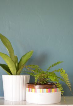 planter made with a wooden bowl, paint and washi tape!
