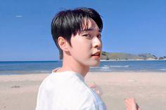 Winwin, Taeyong, Jaehyun, Nct 127, Yuta, Slogan Design, Nct Doyoung, Nature Republic, Fandom