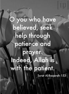 O you who have believed,seek help through patience and prayer.indeed,Allah is with the patient. -Surat Al-Baqarah:153